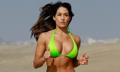 Brie Bella (the Bella twins) Height, Weight and Body Measurements