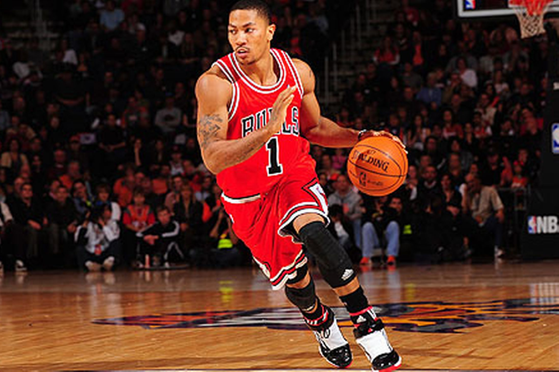 d-rose-s-body-measurements