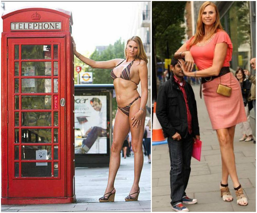 The shortest and the tallest models