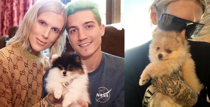 Jeffree Star's family - Pomeranians dogs