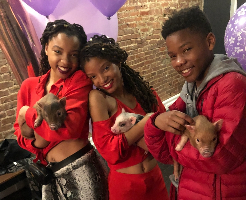 Chloe and Halle Bailey's siblings - brother Branson Bailey