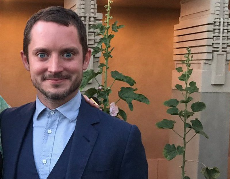 Elijah Wood Family: Kid, Girlfriend, Siblings, Parents - BHW